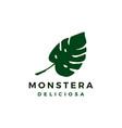 monstera deliciosa logo icon vector image vector image