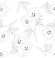 pansy flower on white background outline vector image vector image