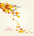 an autumn design vector image vector image
