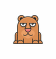cute bear icon on white background vector image