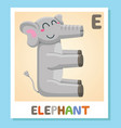 e is for elephant letter e elephant cute vector image vector image