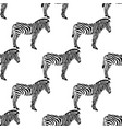 seamless background with zebras vector image