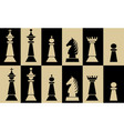 set of chess pieces on chessboard fields white vector image