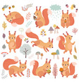 squirrel set hand drawn style cute woodland vector image