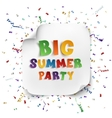 Big summer party poster vector image vector image