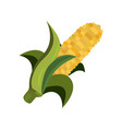 corn icon cartoon style thanksgiving day vector image vector image
