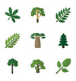 flat icon ecology set of leaves tree maple and vector image vector image