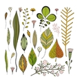 Leaves hand drawn images vector image vector image