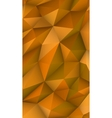 Low Poly Modern Display Triangle Abstract vector image vector image