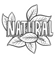 Natural vector image vector image