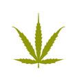 ruderalis cannabis logo icon vector image vector image