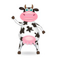 spotted cow vector image