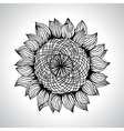 Sunflower Flower element for design vector image