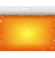 beer fest background and realistic bubbles vector image