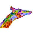 colorful wildlife mammal fauna giraffe isolated vector image