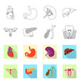 design of body and human symbol set of vector image vector image