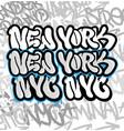 new york graffiti vector image vector image