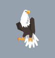 north american bald eagle character symbol of vector image vector image