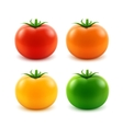 set big red orange green yellow whole tomato vector image