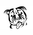 staffordshire bull terrier vector image vector image