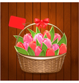 tulip6 vector image vector image