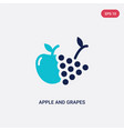 two color apple and grapes icon from food concept vector image
