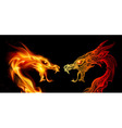 Two dragon heads vector image vector image