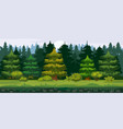 cartoon of the spruce forest vector image vector image