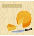 Circle of cheese vector image vector image