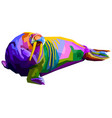 colorful walrus pop art style isolated on white vector image vector image