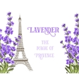 Eiffel tower with lavender vector image vector image