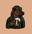 grizzly bear with a beer mug brewer with a glass vector image vector image