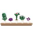 seeding in pots vector image vector image