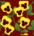 yellow pansy flower on red background vector image vector image