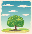 graphic tree on a background summer landscape vector image