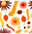 nature flower wreath seamless pattern vector image