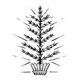 christmas tree stylized in a pot vector image