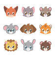 cute animal faces in pastel coloring vector image vector image