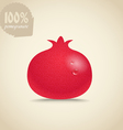 Cute fresh red pomegranate vector image vector image