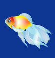 golden fish on the dark blue beckgound vector image vector image
