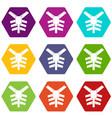 human thorax icon set color hexahedron vector image vector image