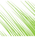 silhouette of grass isolated on white background vector image vector image