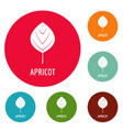 apricot leaf icons circle set vector image