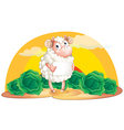 A sheep holding an empty signboard vector image vector image