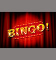 bingo banner template vector image vector image
