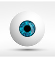 human eye isolated on white background vector image vector image