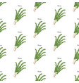 thyme herb seamless pattern vector image vector image