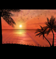 tropical sunset or sunrise with palm trees vector image