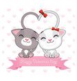 valentines day greeting with two cats in love vector image vector image