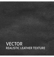 Black leather background vector image